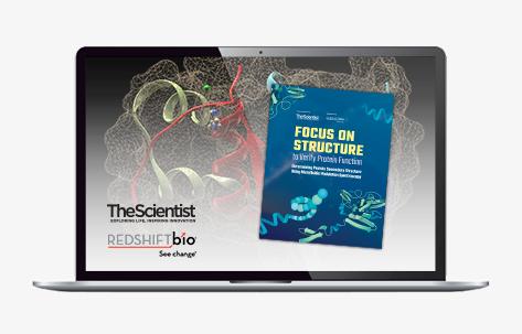 40094_TS_Redshift-Bio-Protein_CTA-Banner_JP473x300-Laptop