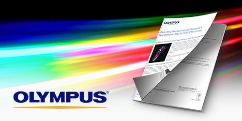 Olympus-2_500x250