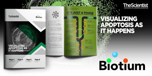 Biotium ebook-500x250