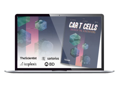 CarTcells_Banners-Revised2473x360